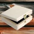 Naturpak Holzbox Birke hell für 8cm Mini CD DVD oder USB Stick